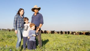 Dandaragan Organic Beef: the next generation