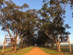 Entry to organic farm in Dandaragan